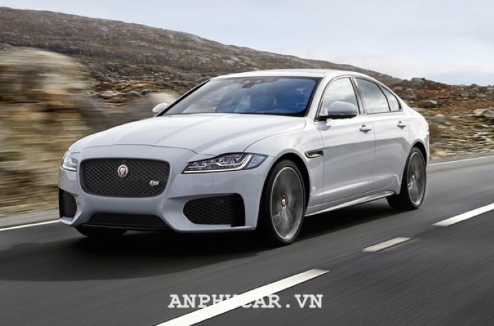 Jaguar XF Pure 2020 gia xe